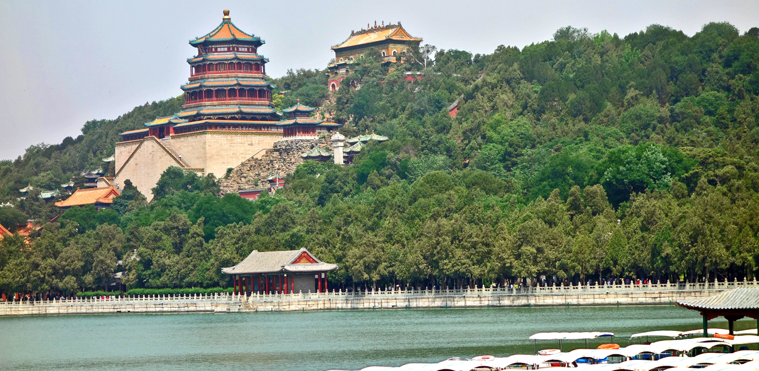Longevity Hill 0584_2 cropped header